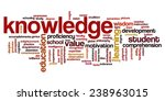 conceptual image of tag cloud... | Shutterstock .eps vector #238963015