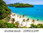 bird eye view of angthong... | Shutterstock . vector #239011249