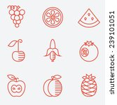 fruit icons  thin line style ... | Shutterstock .eps vector #239101051