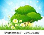 green grass with tree  sun ... | Shutterstock .eps vector #239108389