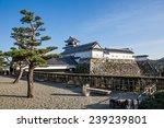 kochi  japan nov 29  2014 kochi ... | Shutterstock . vector #239239801