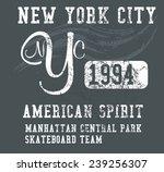 new york city graphic design... | Shutterstock .eps vector #239256307