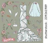 vintage composition of wedding... | Shutterstock .eps vector #239261989