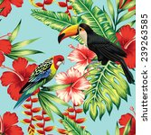 Tropical Birds And Flowers...