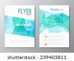 flyer template. cover magazine. ... | Shutterstock .eps vector #239403811
