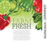 vegetables | Shutterstock .eps vector #239449657