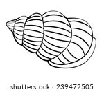 sea shell | Shutterstock . vector #239472505