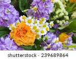 orange and violet bouquet | Shutterstock . vector #239689864
