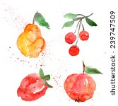 fruit  watercolor  set | Shutterstock . vector #239747509