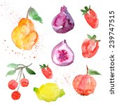 fruit  watercolor  food | Shutterstock . vector #239747515