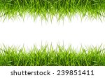 green grass frame isolated on...