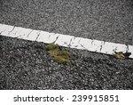 one mottled line on the city... | Shutterstock . vector #239915851
