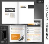 classic vector brochure... | Shutterstock .eps vector #239974174