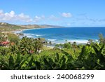 Bathsheba Bay  Barbados  Is...