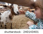 Stock photo a young girl feeding goat close up on hand and goat head innsbruck austria 240143401