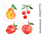 fruit watercolor blot | Shutterstock .eps vector #240207775
