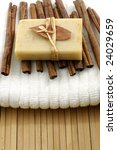 bath accessories on bamboo mat | Shutterstock . vector #24029659