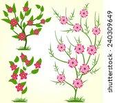 spring flower  | Shutterstock .eps vector #240309649