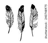 realistic detailed feathers set ... | Shutterstock .eps vector #240748975