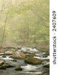 Smoky Mountains Stream With...