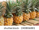 Row Of Pineapple