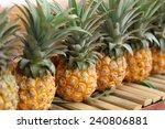 Row Of Pineapple