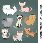 Stock vector cat vector set 240889405