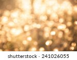 bokeh light vintage backgroun | Shutterstock . vector #241026055