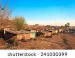 the poorest part of soweto  ... | Shutterstock . vector #241030399