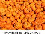 A Lot Of Mini Pumpkin At...