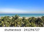 Public Beach Behind The Palm...