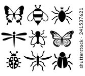insect collection | Shutterstock .eps vector #241537621