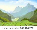 beautiful plantation fields in... | Shutterstock .eps vector #241574671