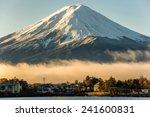 Mt Fuji And The City Around...