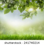 eco nature   green and blue... | Shutterstock . vector #241740214