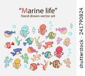 vector marine life hand drawn... | Shutterstock .eps vector #241790824