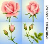 vector roses set blue | Shutterstock .eps vector #24208564