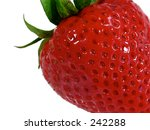 this is a super macro shot of a ... | Shutterstock . vector #242288