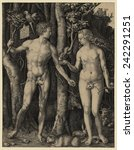 adam and eve  1504 engraving by ... | Shutterstock . vector #242291251