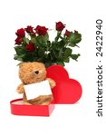 Teddy bear with red roses on a white background - stock photo