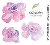 hand painted purple watercolor... | Shutterstock .eps vector #242388859