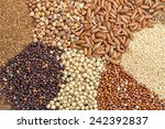 a variety of gluten free grains ... | Shutterstock . vector #242392837