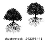 black and white vector trees... | Shutterstock .eps vector #242398441