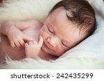 little newborn baby boy 14 days ... | Shutterstock . vector #242435299