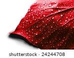 Valentine Day Symbol   Water...