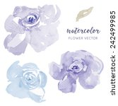 vector watercolor flowers. blue ... | Shutterstock .eps vector #242499985
