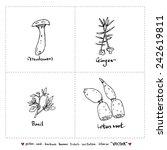 food menu illustrations   set... | Shutterstock .eps vector #242619811