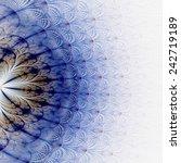 Symmetrical Fractal Flower ...