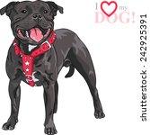 Sketch Of The Black Dog...