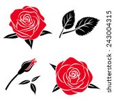 Stock vector beautiful flower red black rose set with leaf vector roses illustration isolated on white 243004315